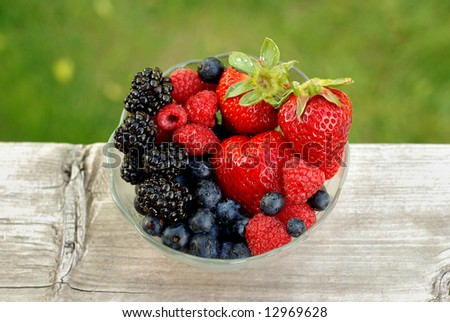 Bowl of mixed berries outdoors with a contrasting background - stock photo