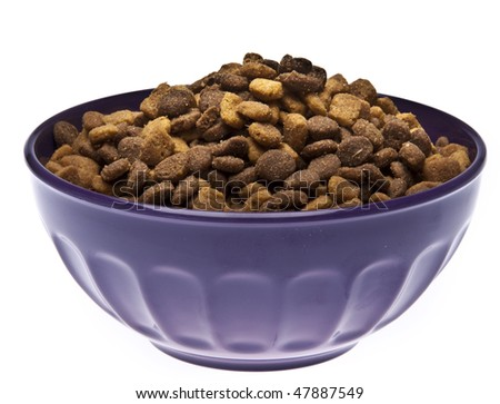 Bowl of pet food isolated on white with a clipping path.