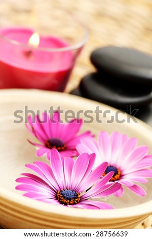 bowl of pure water and pink flowers - beauty treatment