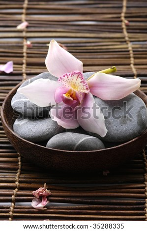 Bowl of spa stone with orchid - stock photo