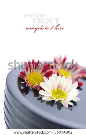 bowl of water and flowers over white with copyspace - stock photo