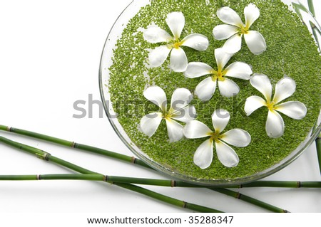 Bowl of white frangipani with thin bamboo - stock photo