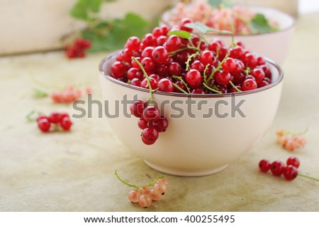 Bowl with fresh red currant and branch of ripe berries on rustic table
