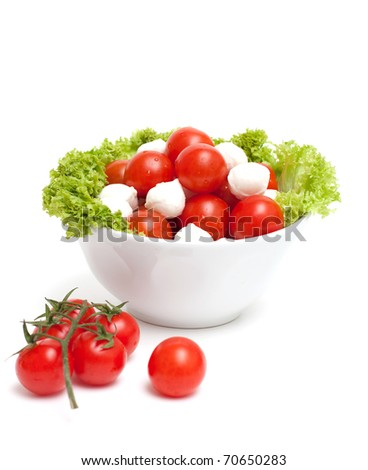 bowl with tomatoes and mozzarella - stock photo