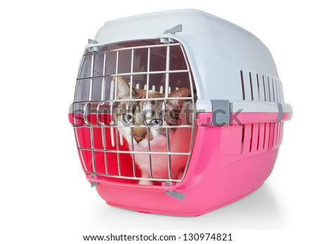 Box with a cat cage for transport. On a white background. - stock photo