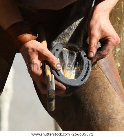 Box with farrier tools - stock photo