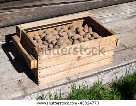 box with seed potatoes