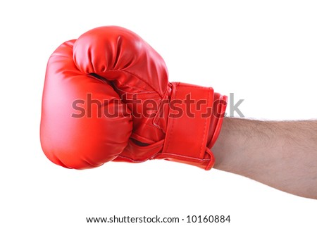 Boxer against white background - stock photo
