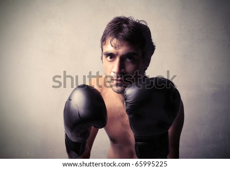 Boxer on guard - stock photo