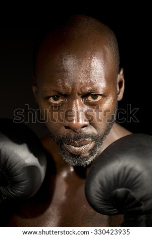Boxer's Stare - stock photo