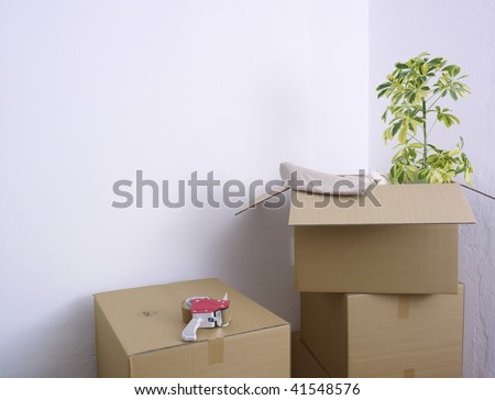 Boxes, cartons and a plant kept in the corner of a room during house moving process.