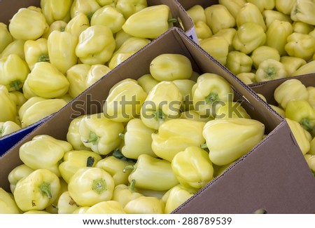 Boxes of yellow pepper in farmer market. Selective focus and shallow dof. - stock photo