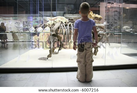 boy and dinosaur`s skeleton in museum - stock photo