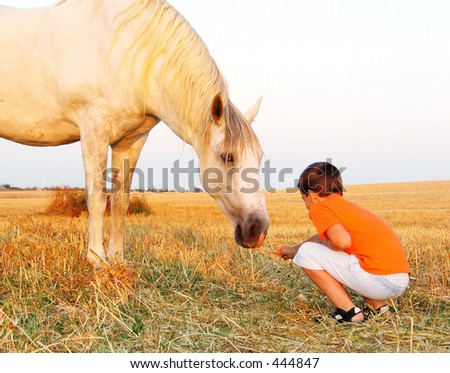 boy and horse - stock photo