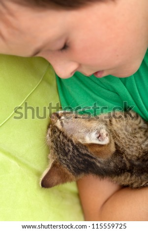 Boy asleep with his new kitten - getting to know each other - stock photo