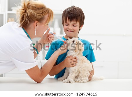 Boy at the veterinary doctor with his dog - stock photo
