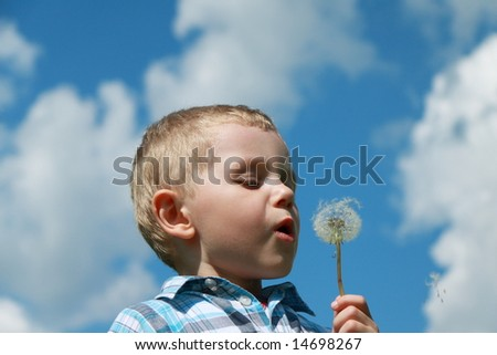 Boy blowing dandelion - stock photo