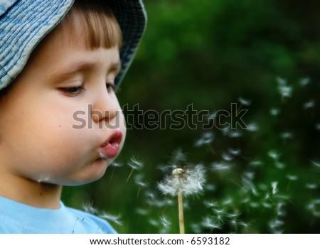 Boy blowing dandelion - stock photo