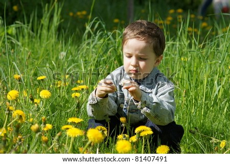 Boy collects flowers on the lawn - stock photo