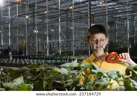 Boy Examining Plants - stock photo