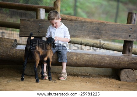 Boy feeding baby goat with baby bottle at farm - stock photo
