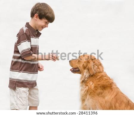 Boy Giving Dog a Reward - stock photo