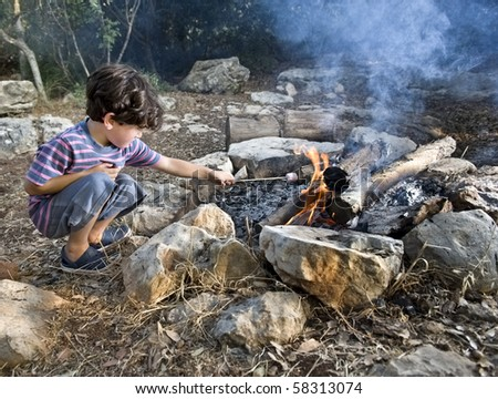 boy having marshmallow at the campfire