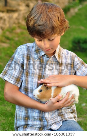Boy holding a guinea pig - stock photo