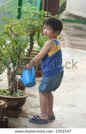 Boy holding blue watering-can watering the plant - stock photo