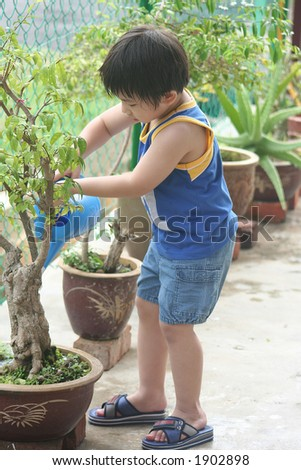 Boy holding watering-can watering the plant - stock photo