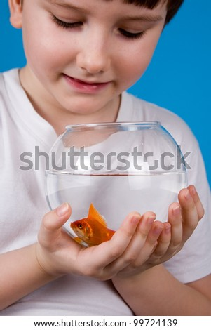 Boy holds a fishbowl with a goldfish on a blue background - stock photo