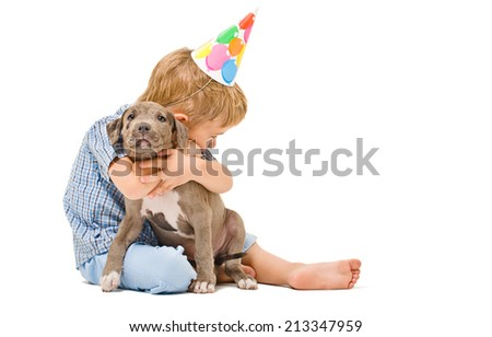 Boy hugs the puppy pitbull of given a present to birthday - stock photo
