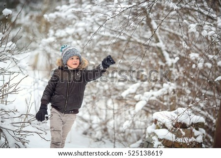 boy in a knitted hat, feather bed is in the winter forest