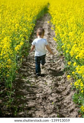 boy in the field - stock photo