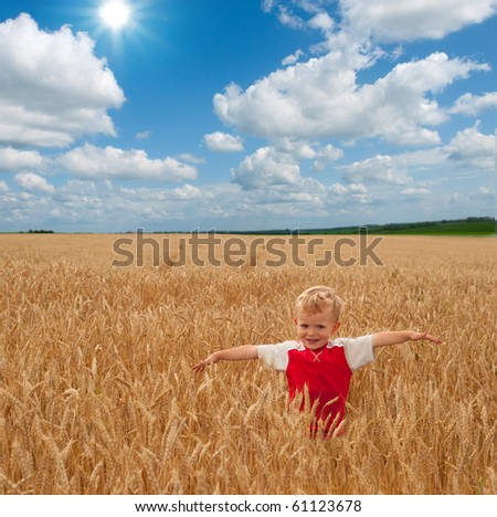 Boy in the field - stock photo