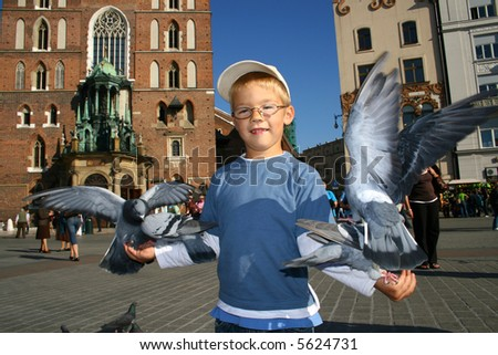 Boy is feeding the birds - stock photo