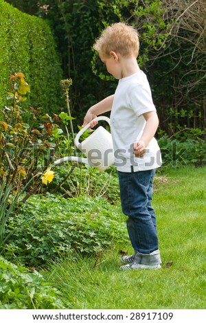 Boy is watering plants in the garden - stock photo