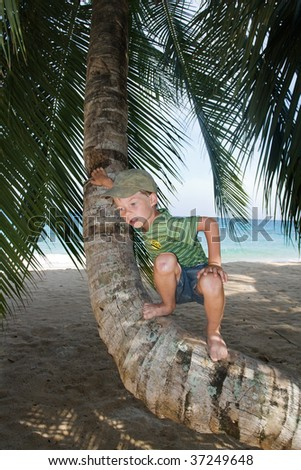 Boy on palm tree on a beach - stock photo