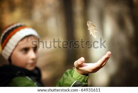 Boy outdoors, catching a falling leaf in the forest