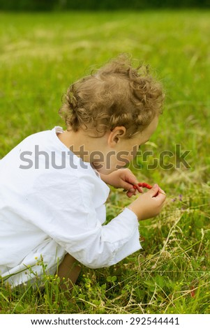 boy picking wild straberries