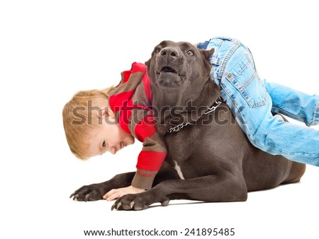 Boy playing with the dog isolated on white background - stock photo