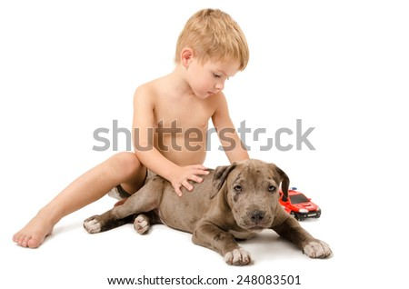 Boy playing with the puppy pitbull and fire machine isolated on white background - stock photo