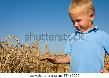 Boy pointing wheat ear in summer day on farm - stock photo