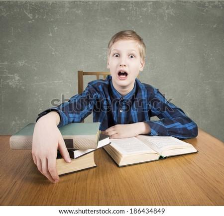 Boy reads books - stock photo