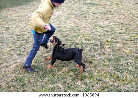 Boy running in front of dog - stock photo