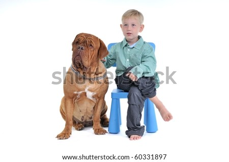 Boy sitting on a chair with a huge dog - stock photo