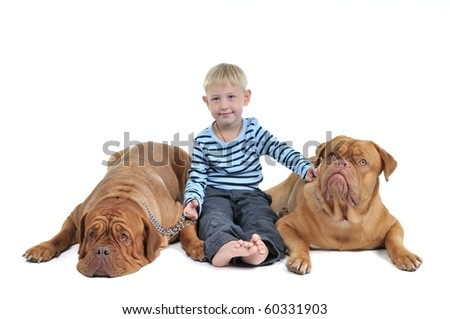 Boy sitting with two huge dogs