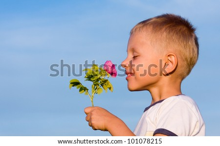 Boy smelling rose flower in spring day.