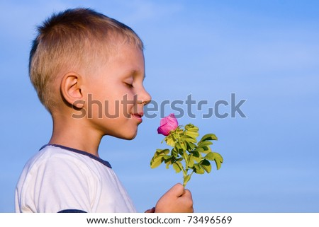 Boy smelling wild rose flower in spring day. - stock photo