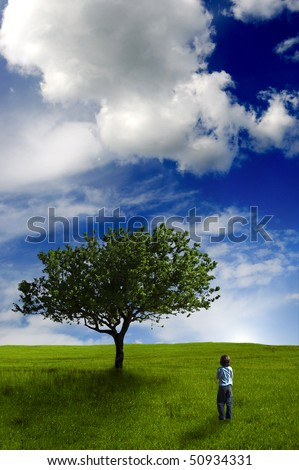 boy standing in a meadow with tree and walking toward the sun behind the hill - stock photo